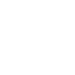 Vivid Engagement Global Website